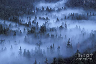 Art Print featuring the photograph Valley In Fog by Stan and Anne Foster