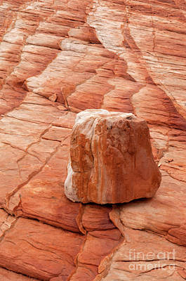 Photograph - Valley Of Fire 34 by Bob Christopher