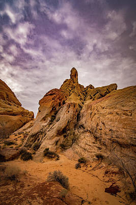 Photograph - Valley Of Fire At Rainbow View by Janis Knight