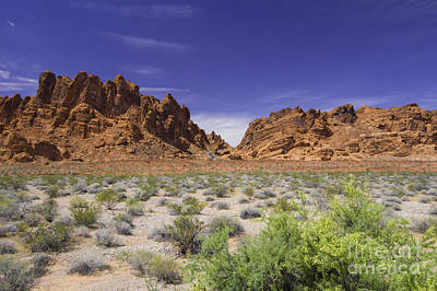 Photograph - Valley Of Fire Canyons by Louise Magno