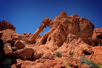 Photograph - Valley Of Fire IIi by Ricky Barnard