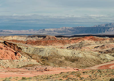 Photograph - Valley Of Fire, Nevada by Tom Potter
