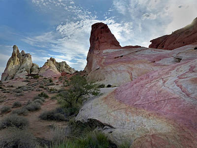 Photograph - Valley Of Fire Ribbon by Jeff Brunton