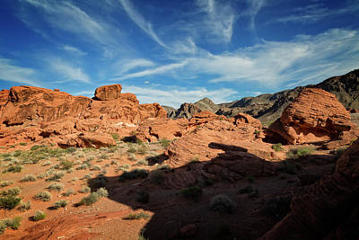 Photograph - Valley Of Fire Xi by Ricky Barnard
