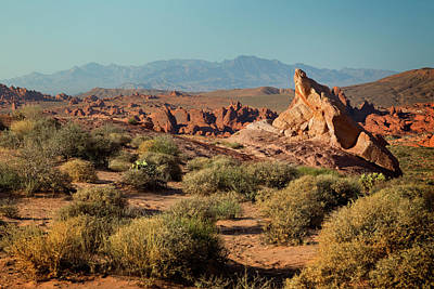 Photograph - Valley Of Fire Xiii by Ricky Barnard