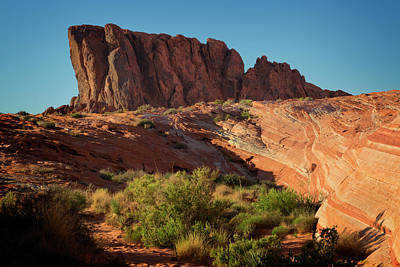 Photograph - Valley Of Fire Xix by Ricky Barnard