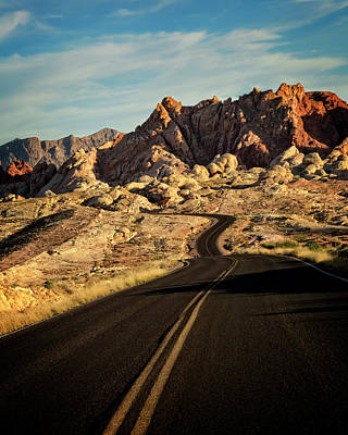 Photograph - Valley Of Fire Xxiv by Ricky Barnard