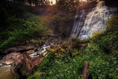Photograph - Valley Of Golden Light by Neil Shapiro