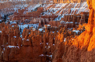 Photograph - Valley Of Hoodoos by Jonathan Nguyen