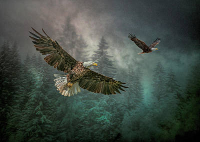 Photograph - Valley Of The Eagles. by Brian Tarr