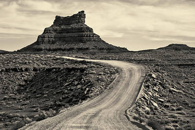 Photograph - Valley Of The Gods IIi Toned by David Gordon