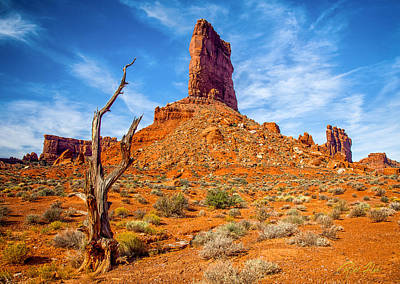 Photograph - Valley Of The Gods by Rikk Flohr