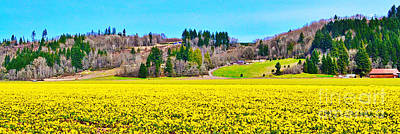 Photograph - Valley Of Yellow by Ansel Price