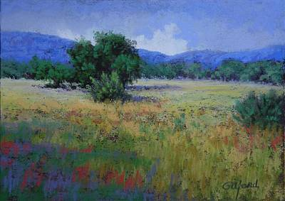 Valley View Art Print by Paula Ann Ford