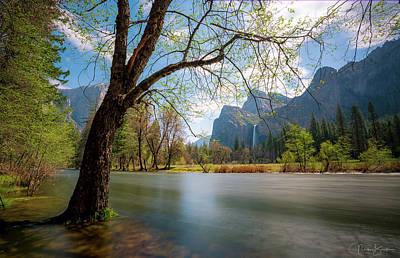 Photograph - Valley View - Yosemite Np by Nick Borelli