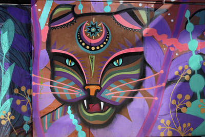 Photograph - Valparaiso Street Art 19 by Aidan Moran