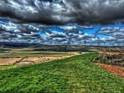 Photograph - Van Duzer Vineyards View by Thom Zehrfeld
