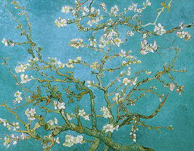 Tree Oil Painting - Van Gogh Blossoming Almond Tree by Vincent Van Gogh
