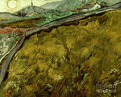 Photograph - Van Gogh: Field, 1890 by Granger