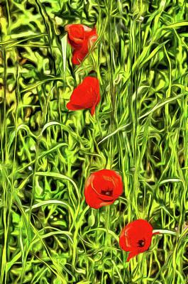 Photograph - Van Goth Poppys by David Pyatt
