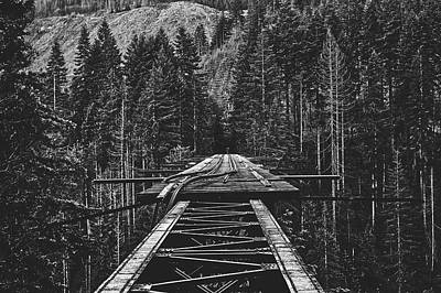 Photograph - Vance Creek Bridge, Washington by Unsplash