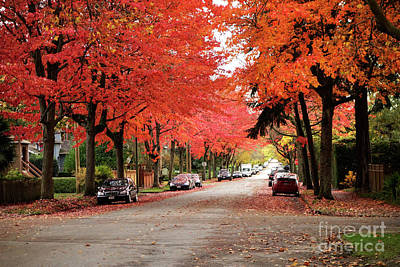 Photograph - Vancouver Autumn In The City by Maria Janicki