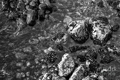 Photograph - Vancouver Harbor Rocks Mono by John Rizzuto