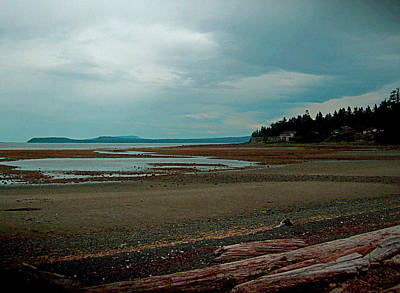Digital Art - Vancouver Island N Her Beaches by Joseph Coulombe
