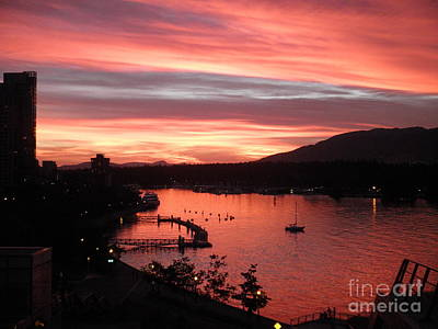 Photograph - Vancouver Sunset by Neil Zimmerman