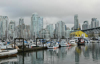 Photograph - Vancouver Winter Morning 2 by Fraida Gutovich