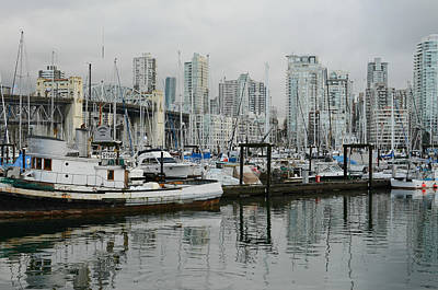 Photograph - Vancouver Winter Morning by Fraida Gutovich