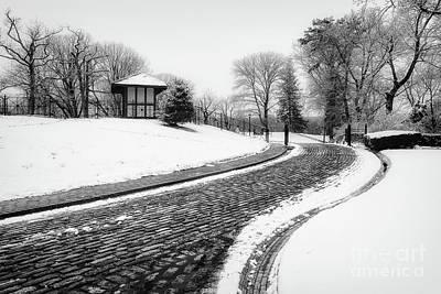 Photograph - Vanderbilt Winter Road by Alissa Beth Photography