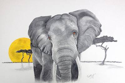 Drawing - Vanishing Elephant by Joette Snyder