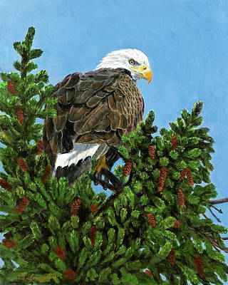 Sitka Painting - Vantage Point by Dan Spangler