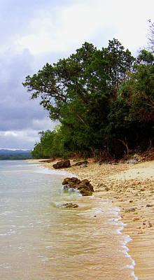 Photograph - Vanuatu 5 by Elisabeth Dubois