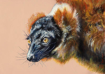 Vari Roux Art Print by Kateryna Bielikova