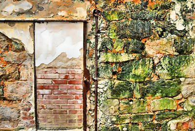 Photograph - Varied Texture by JAMART Photography