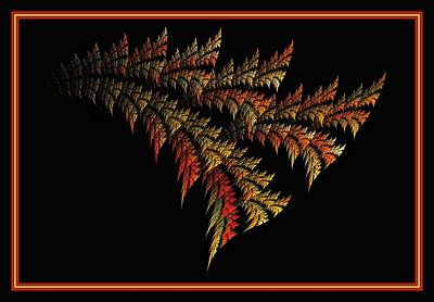 Digital Art - Variegated Palmetto - Framed by Doug Morgan