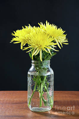 Mums Photograph - Vase Of Spider Mums by Tod and Cynthia Grubbs