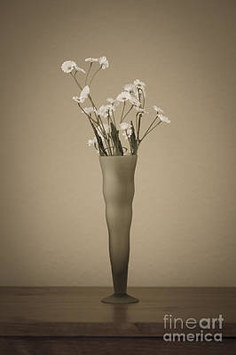 Vase With Flowers  Art Print by Jim Corwin