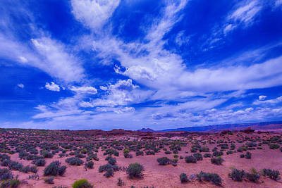 Vast Desert Sky Art Print by Garry Gay