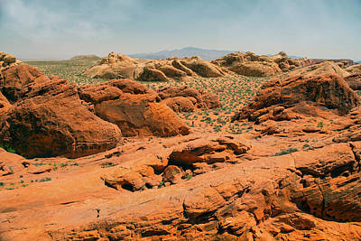 Photograph - Vast Desert Valley Of Fire by Frank Wilson