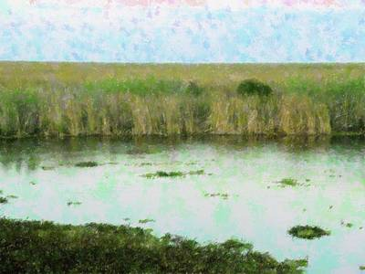Vast Everglades Original