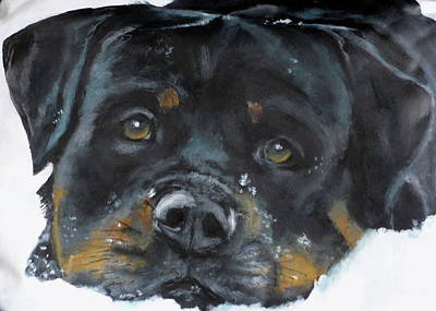 Dog Close-up Painting - Vator by Carol Russell