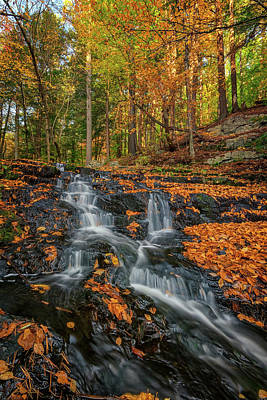 Photograph - Vaughan Brook In Autumn by Rick Berk