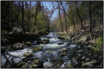 Photograph - Vaughan Brook by John Meader