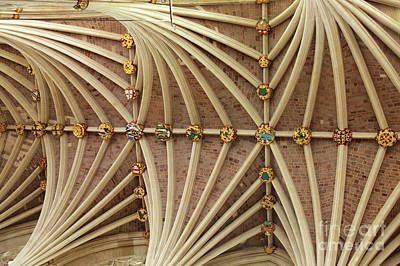 Photograph - Vaulted Ceiling In Exeter Cathedral by Patricia Hofmeester