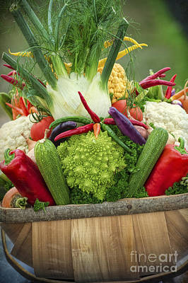 Cauliflower Photograph - Veg Trug by Tim Gainey