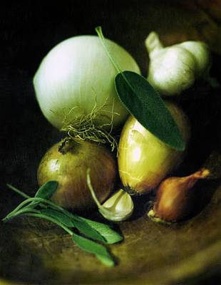 Onion Drawing - Vegetables For Thanksgiving Stuffing by Romulo Yanes