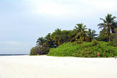 Photograph - Vegetation On The Beach In Maldives by Oana Unciuleanu